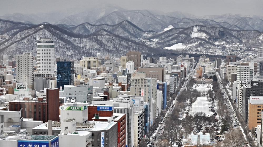 Overview of the Sapporo Snow Festival